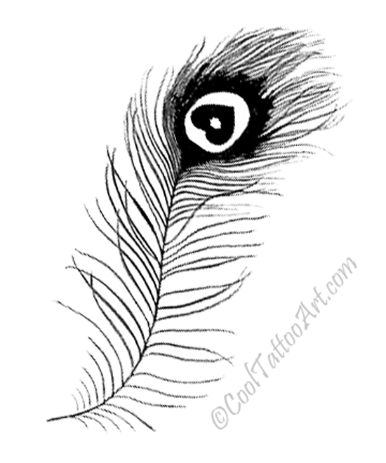 Cooltattooarts tattoo art design ideas page 2 for Peacock tattoo black and white